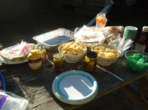 stockvault-cookout-food-table147492.jpg