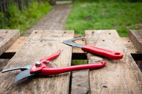 stockvault-gardening-tools132194.jpg