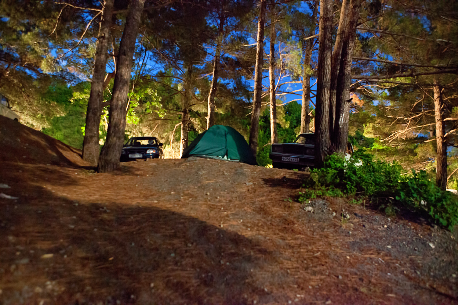 stockvault-camping-site-at-night137751.jpg